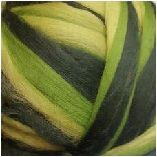 Multicolor Merino tops 50g. ± 2,5g. Colors - green hues, 20,1 - 23 mik.